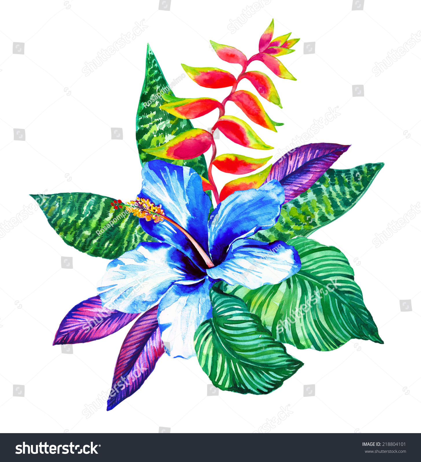 Beautiful Floral Composition Exotic Watercolor Flowers Stock