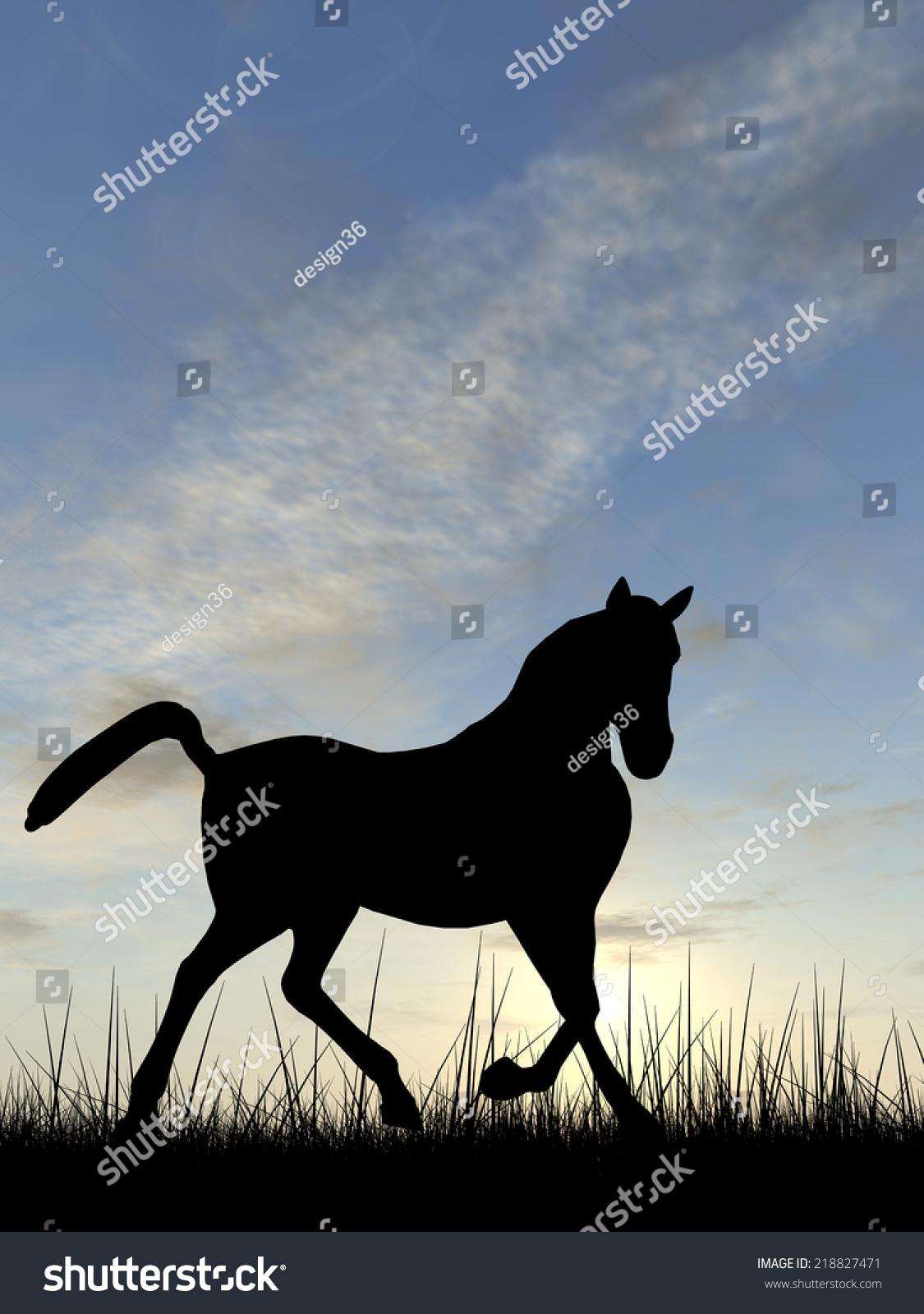 Concept Conceptual Young Beautiful Black Horse Stock Illustration 218827471