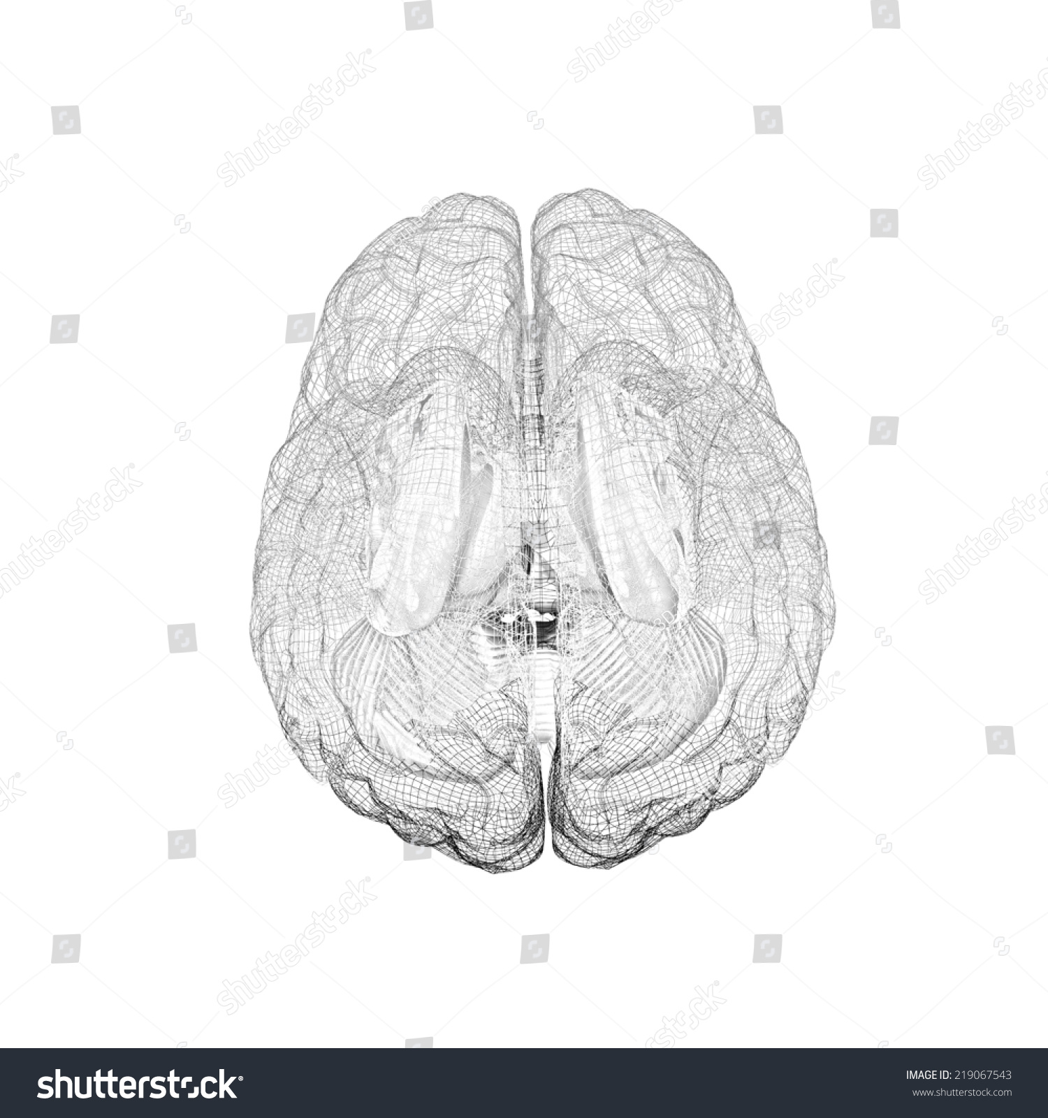 Creative Concept Of The Human Brain Pencil Drawing Ez Canvas