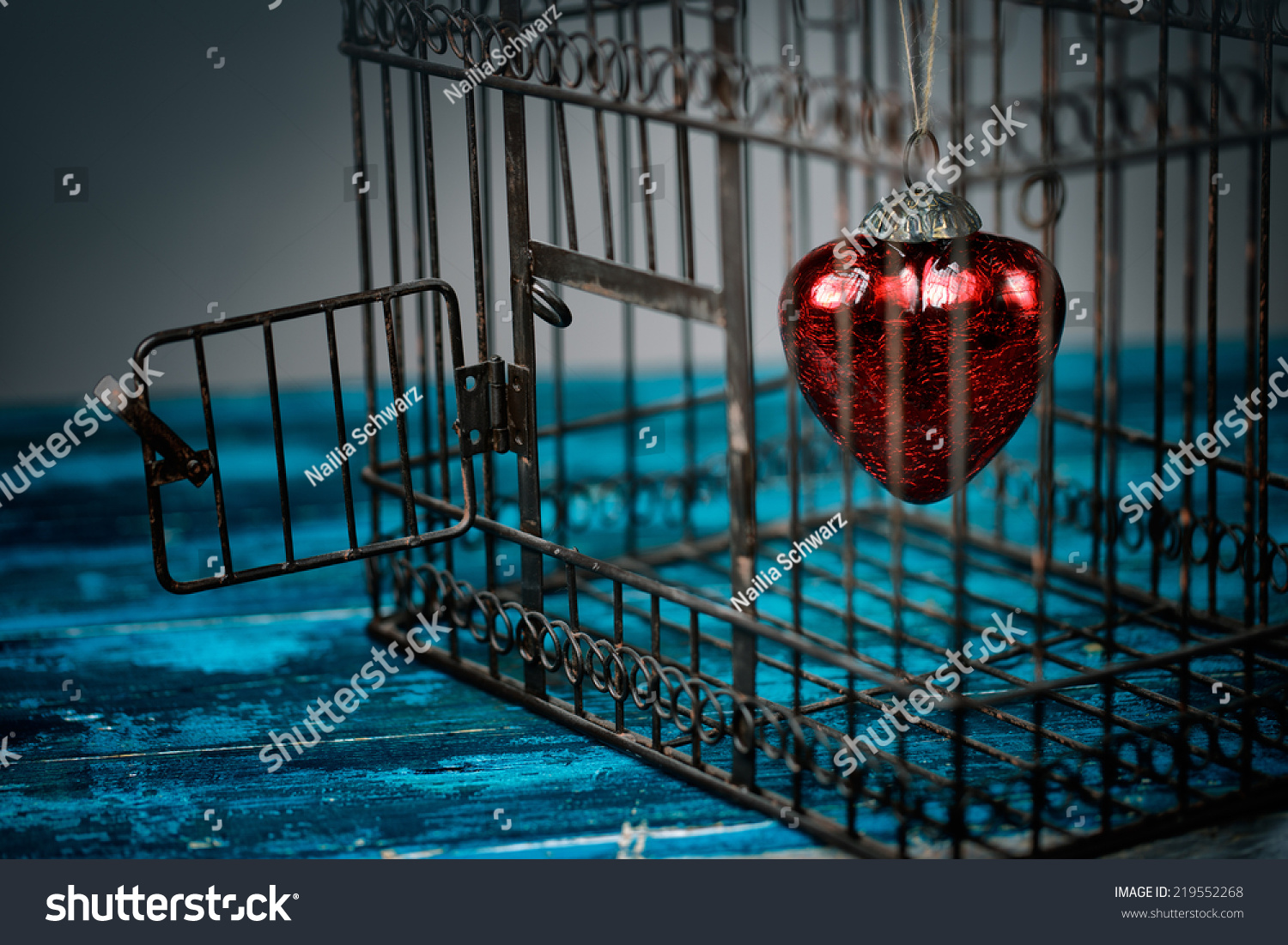 Red Heart Trapped Inside Old Rusty Stock Photo Edit Now 219552268
