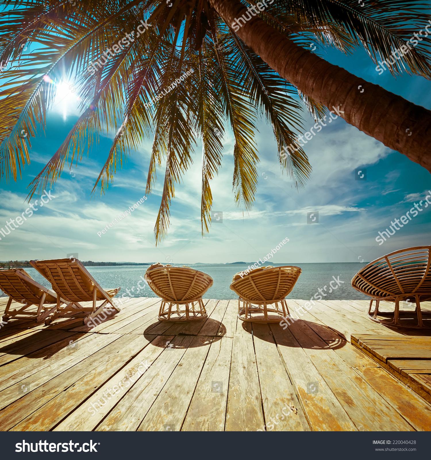 Amazing Tropical Beach Landscape Palm Tree Stock Photo
