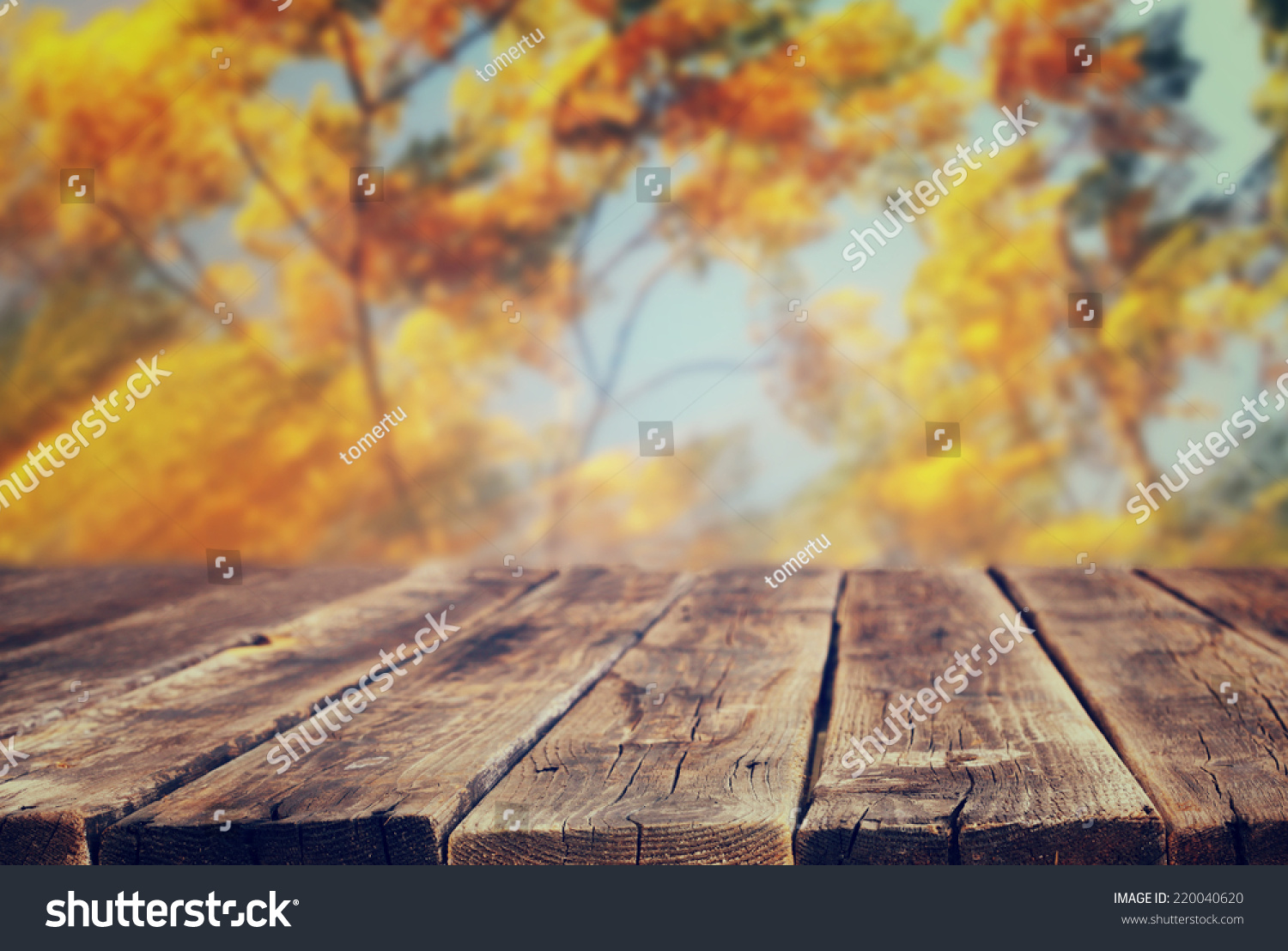 Image Of Front Rustic Wood Boards And Background Fall Leaves In Forest