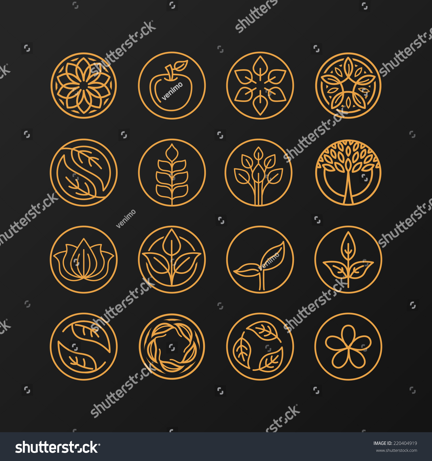 Vector Abstract Emblem Outline Monogram Nature Stock