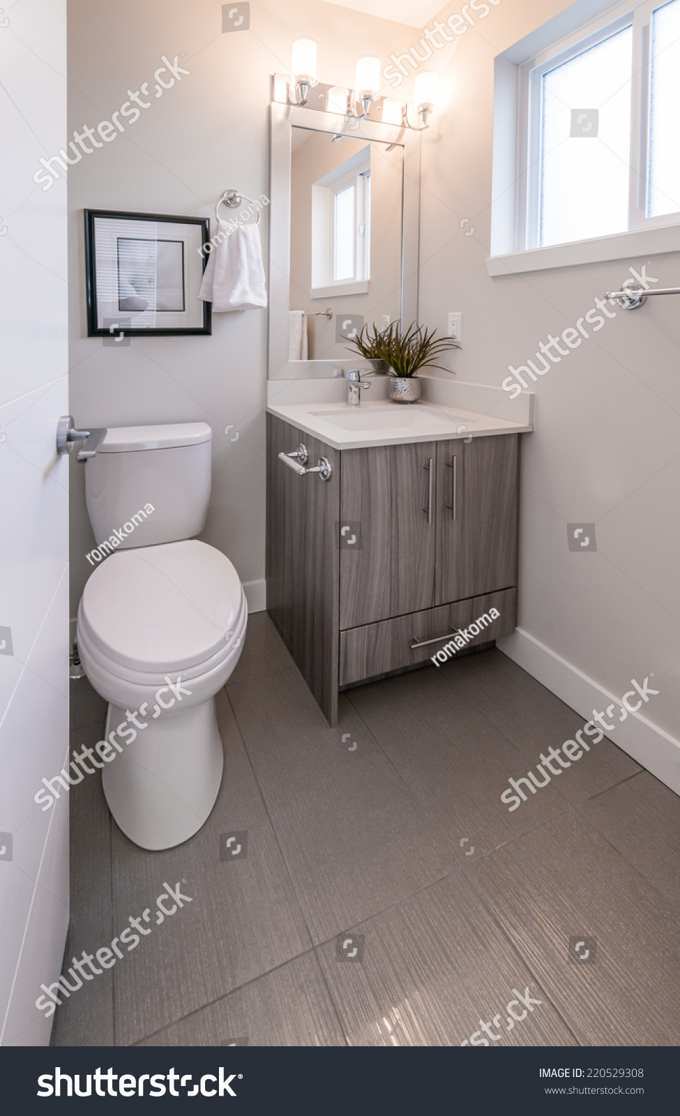 Nicely Decorated Modern Washroom Bathroom With The Toilet Sit Sink Some Plants