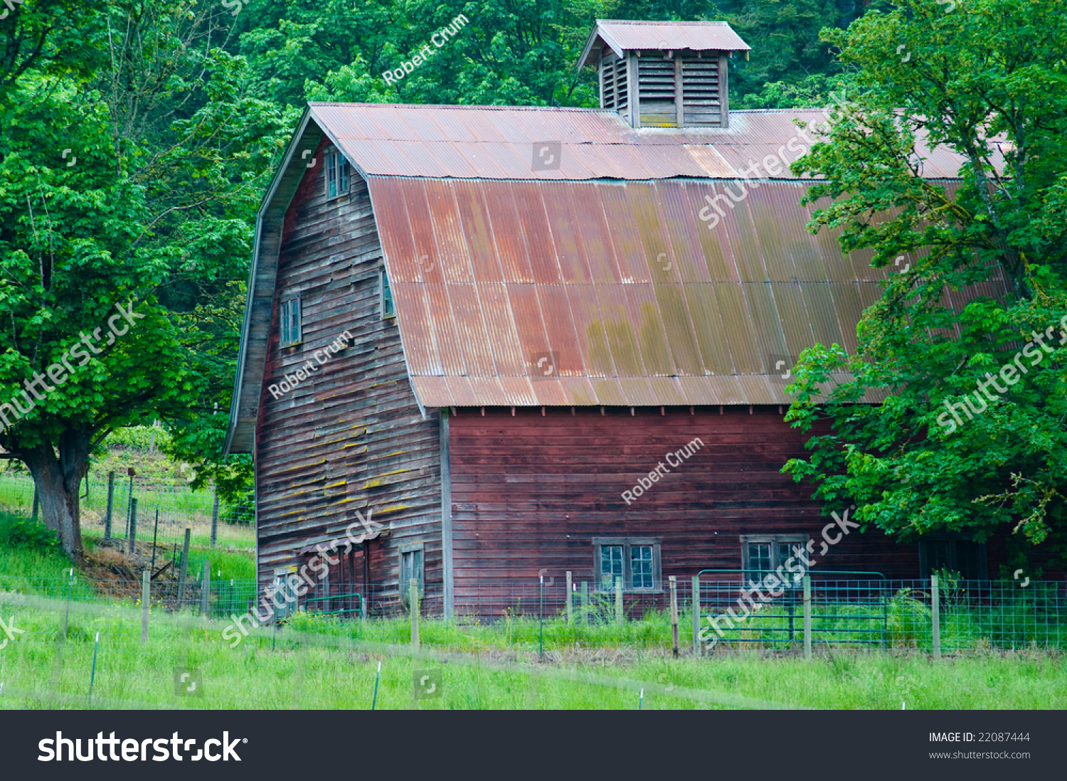 Old Red Wooden Barn Among Green Trees And Field Roof
