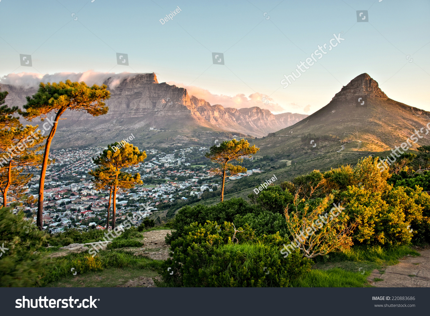Signal Hill, Cape Town, South Africa #220883686