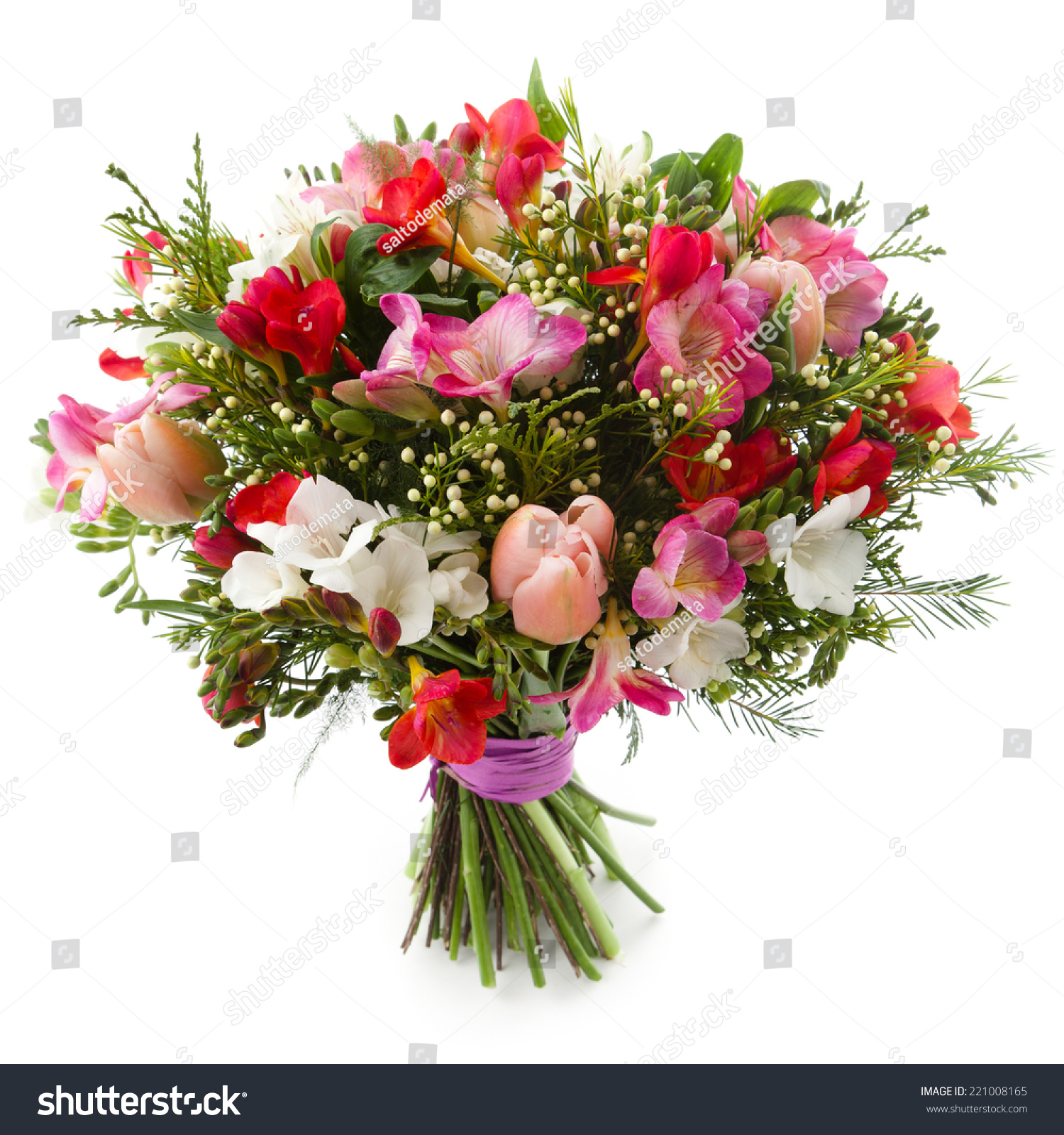 Freesia flower bouquet image collections flower wallpaper hd freesia flowers bouquet isolated on white stock photo royalty free freesia flowers bouquet isolated on white izmirmasajfo