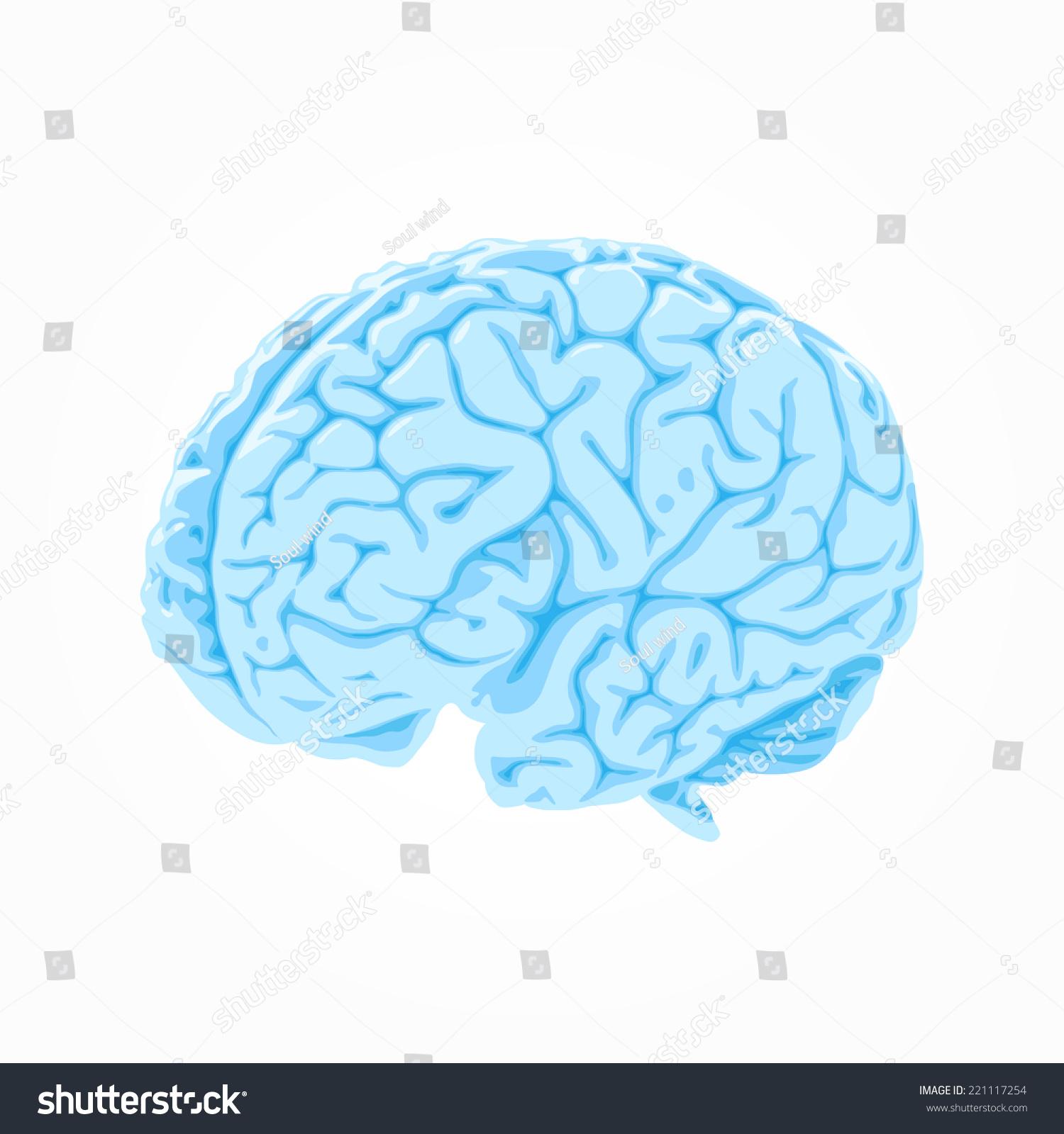Blue Brain Icon Stock Vector 221117254 - Shutterstock