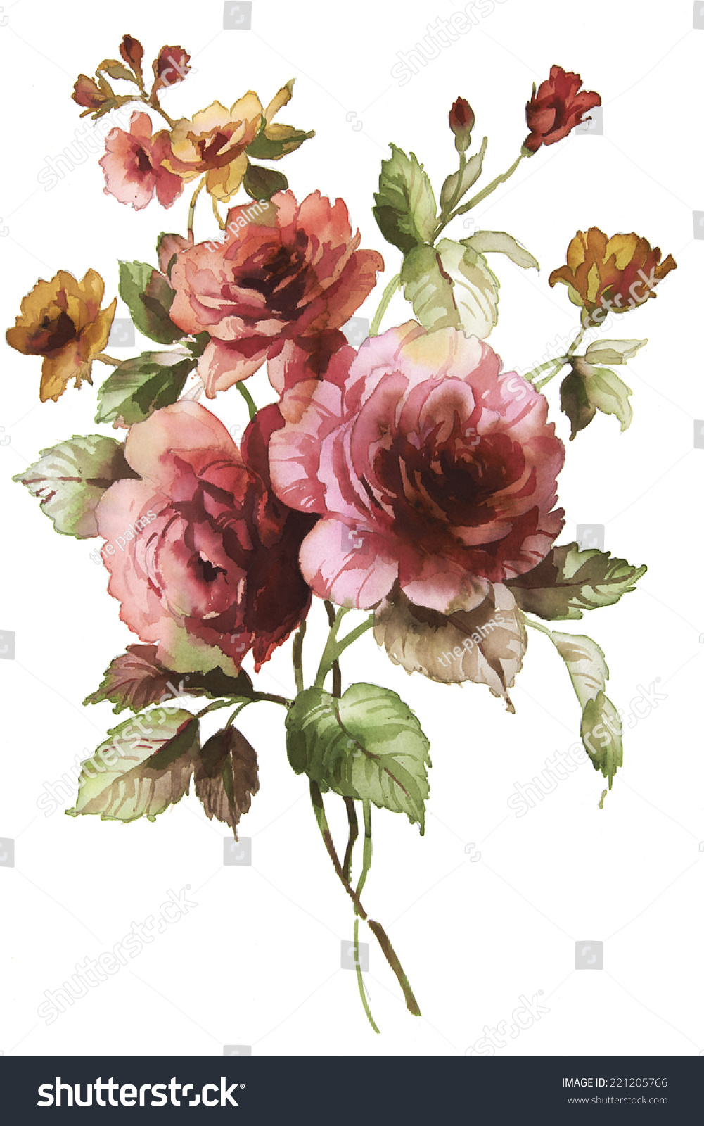 Color Illustration Flowers Watercolor Paintings Stock Illustration ...
