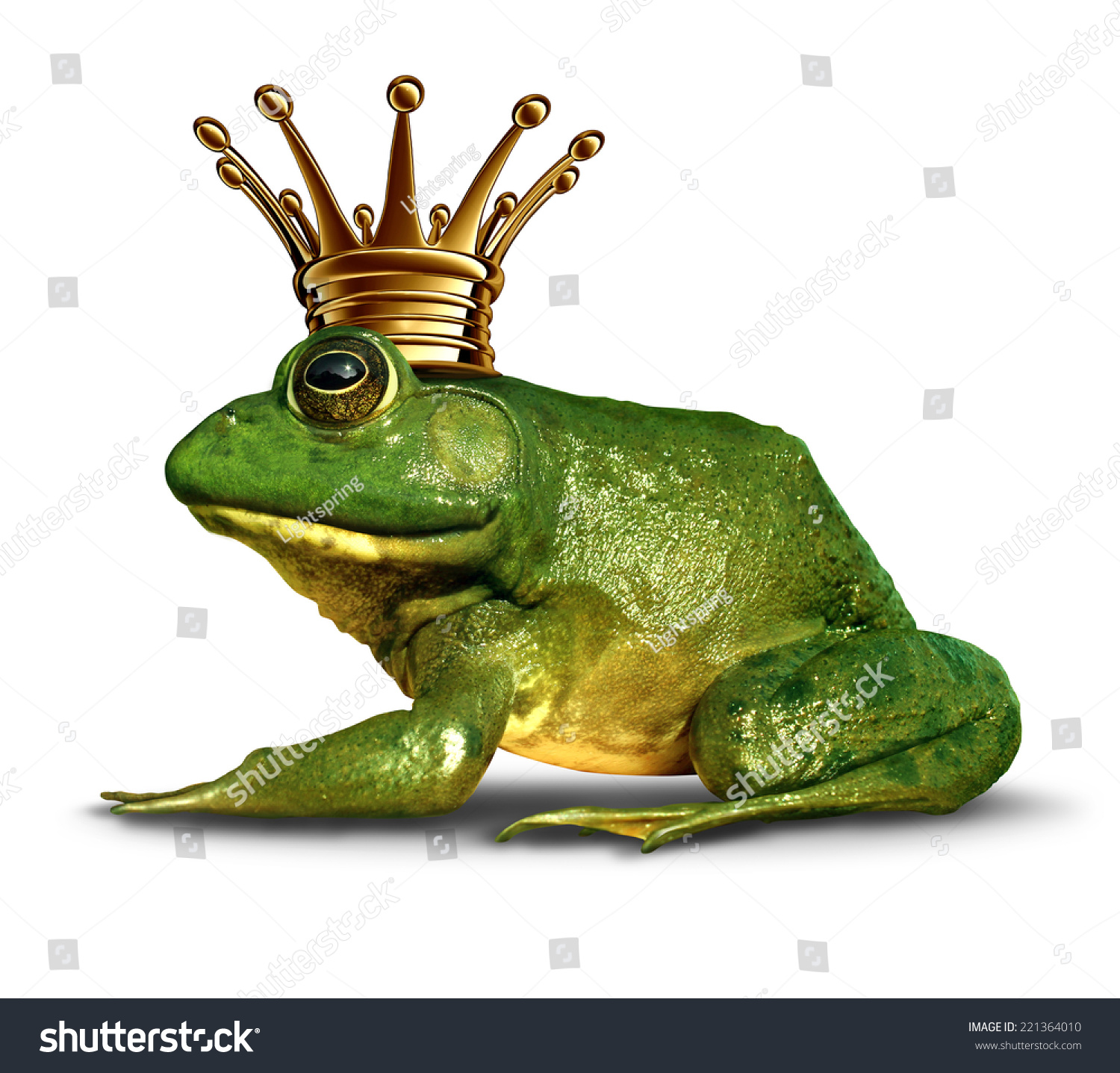 Frog prince side view concept gold stock illustration for Frog transformation