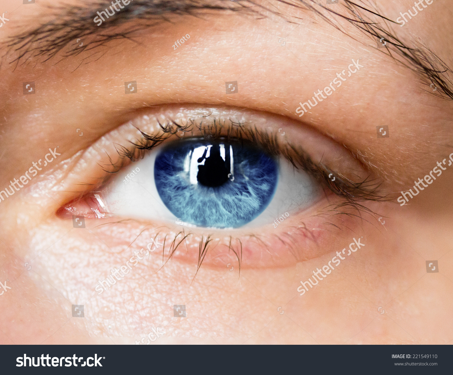 Bright Blue Eye Close Up Stock Photo 221549110 : Shutterstock Bright Blue Eyes Close Up Tumblr