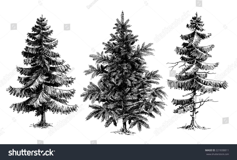 Tall Pencil Christmas Trees