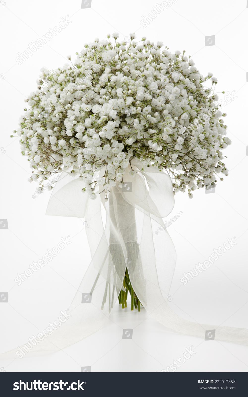 White Gypsophila Flowers Wedding Bouquet Stock Photo Edit Now