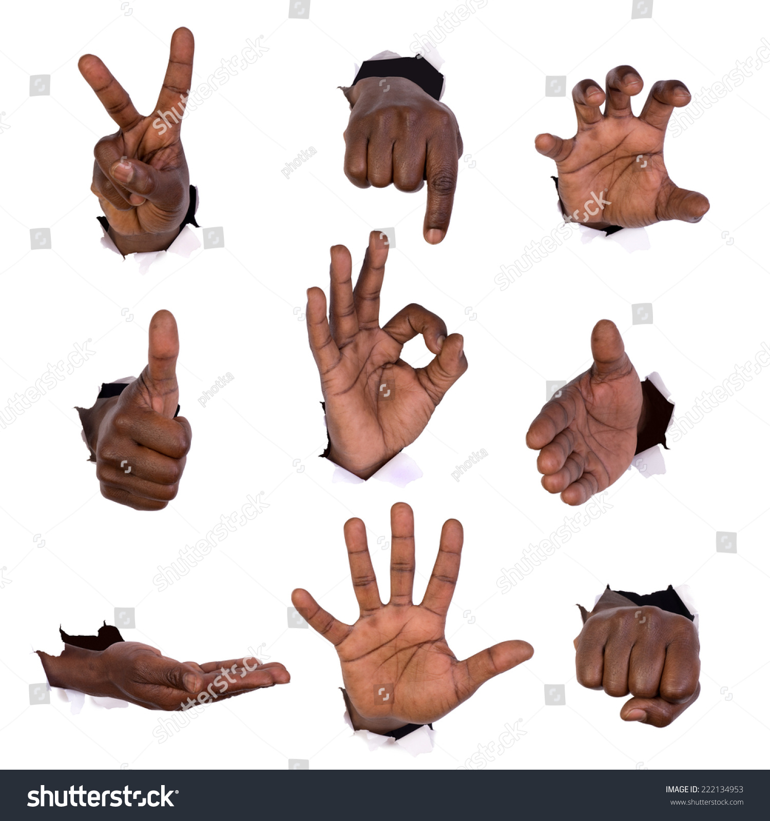 thesis on gesture Hand and mind: what gestures revealaboutthought undergraduate thesis atthe university ofchicago gesture to highlight what a narrator finds salient.