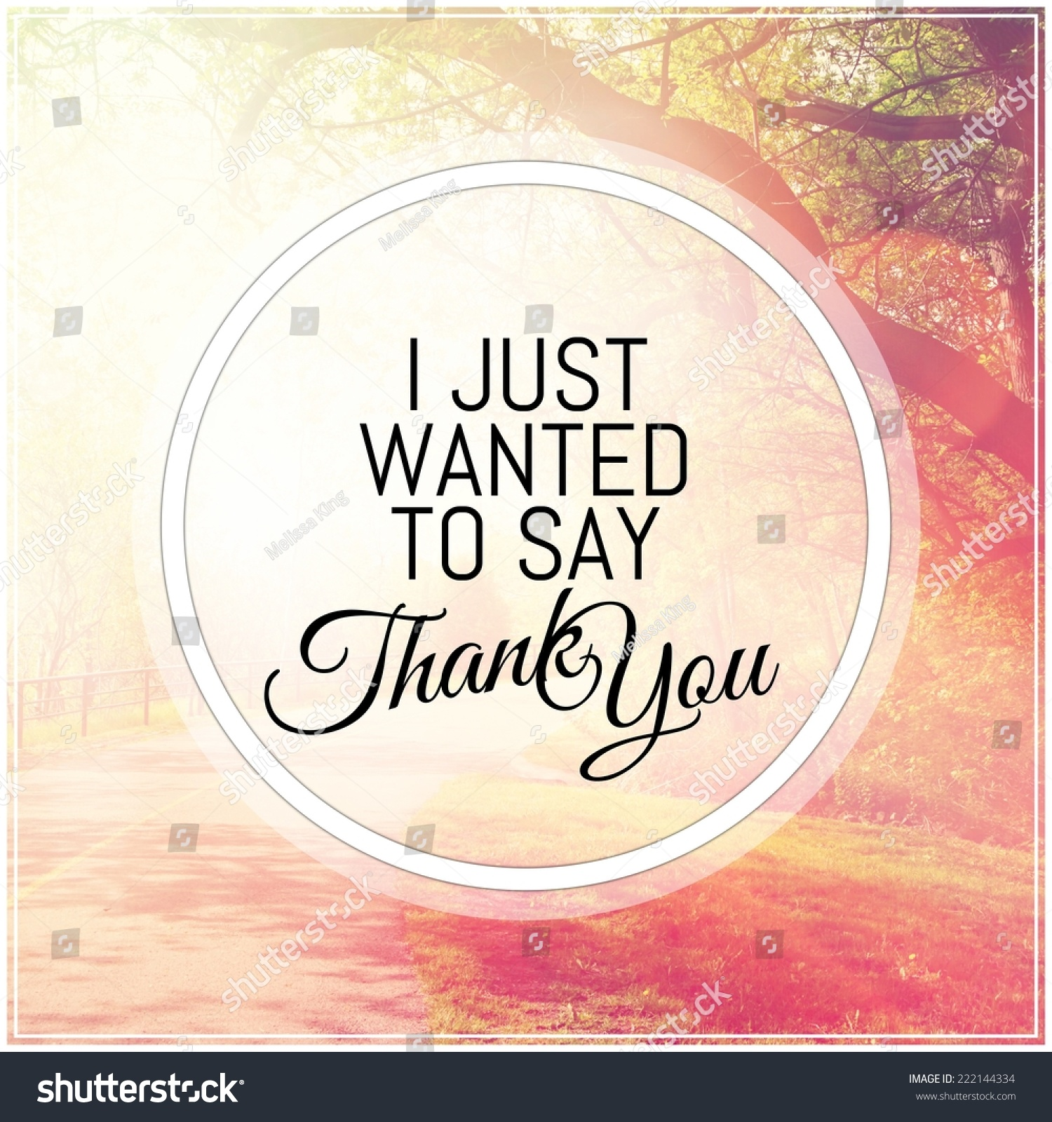 Quotes To Say Thanks: Inspirational Typographic Quote Just Wanted Say Stock