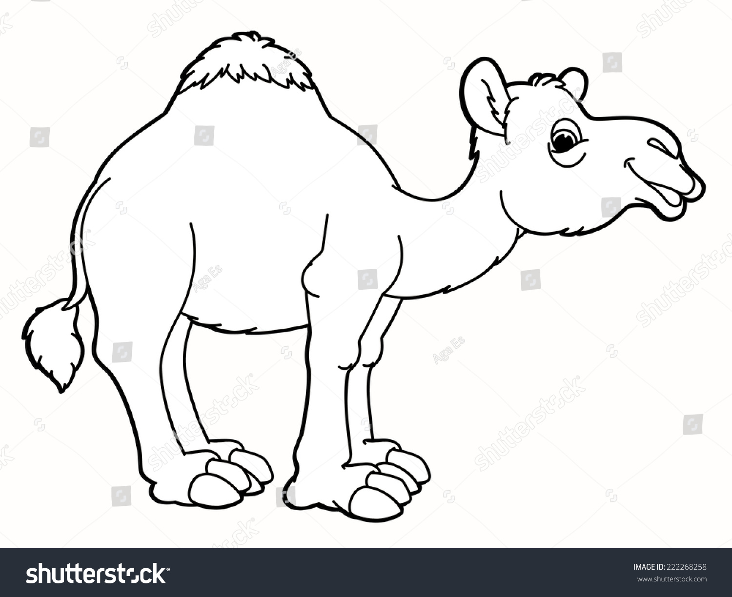 cartoon animal camel caricature coloring page stock illustration