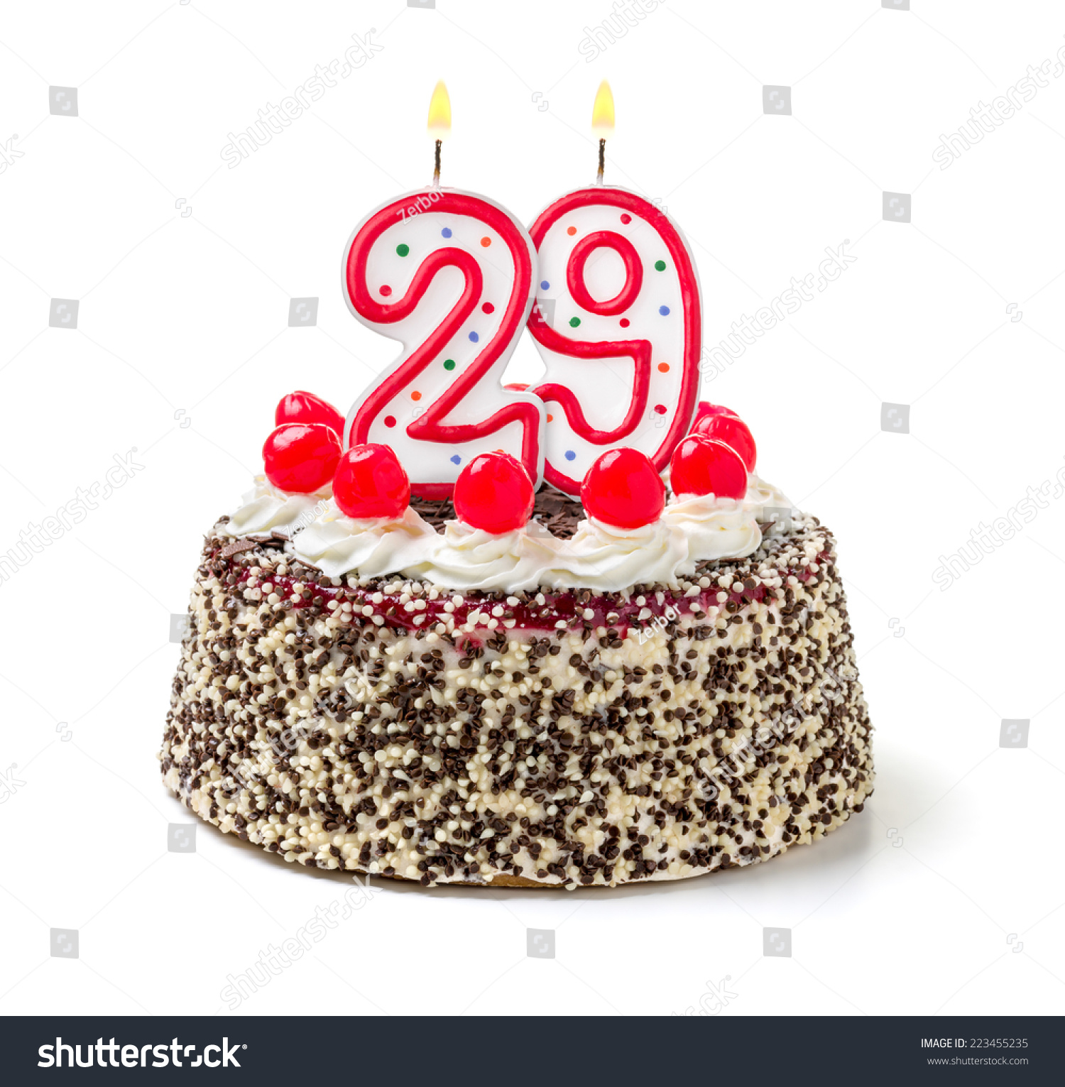 Birthday Cake Burning Candle Number 29 Stock Photo Edit Now