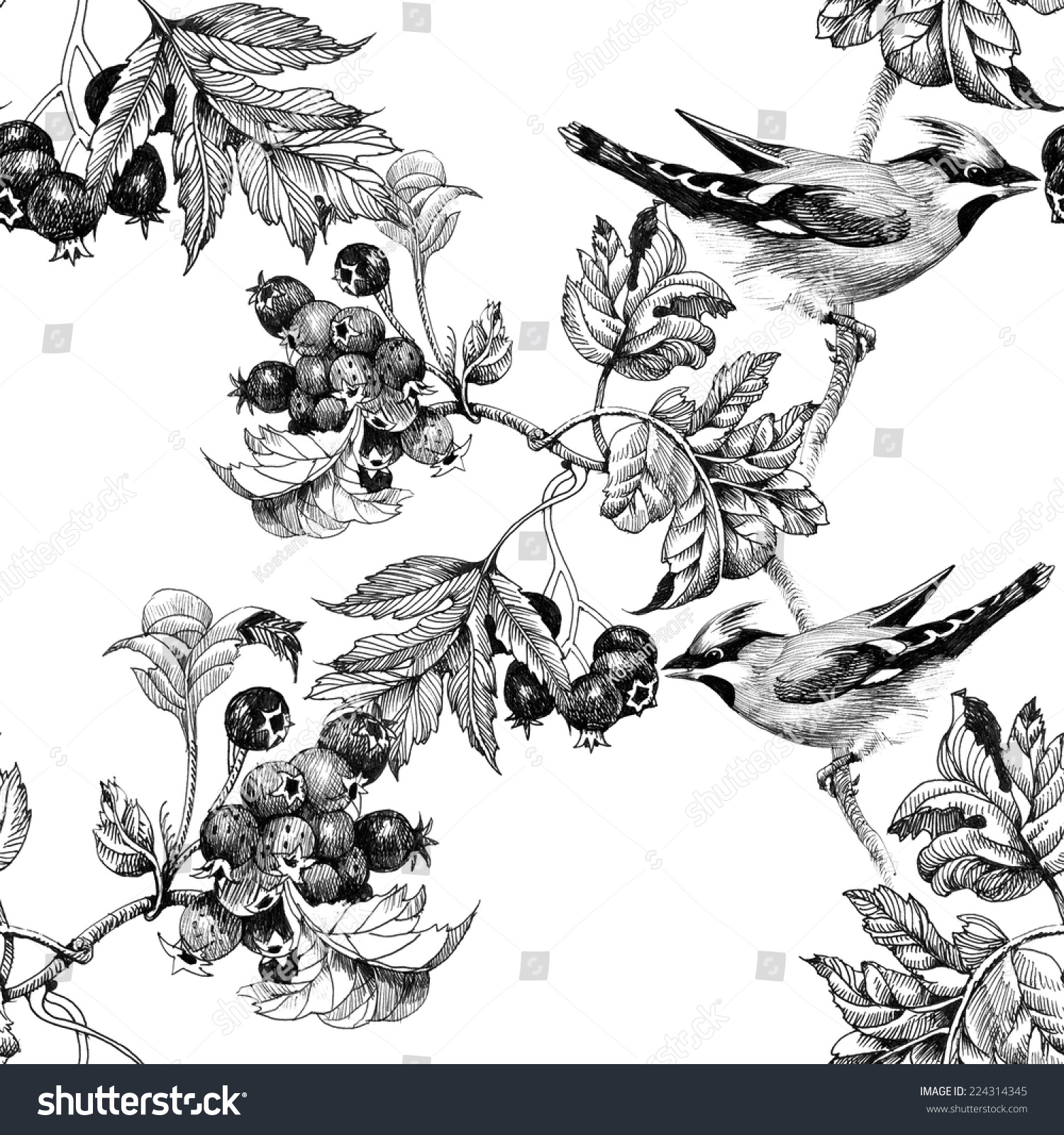 Drawing of beautiful birds and flowers seamless pattern on white background vector illustration