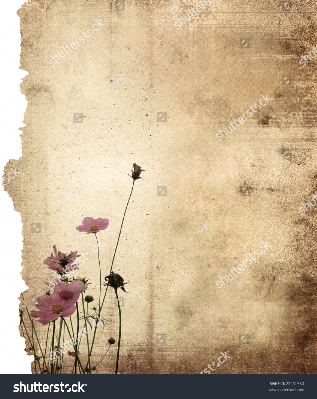 Vintage Flower Paper Background Stock Photo Edit Now 22431580