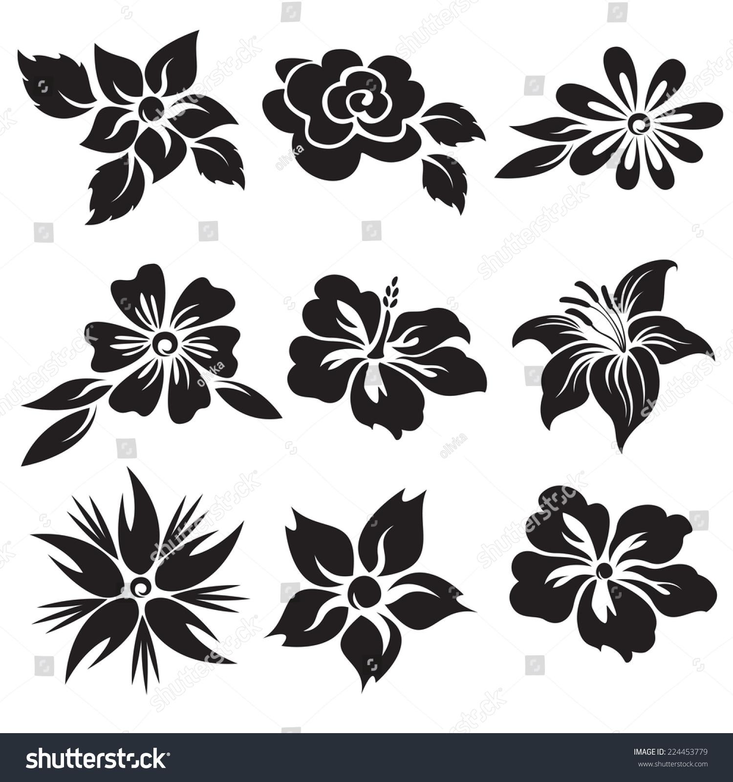 Vector Set Black White Flowers Stock Vector Royalty Free 224453779