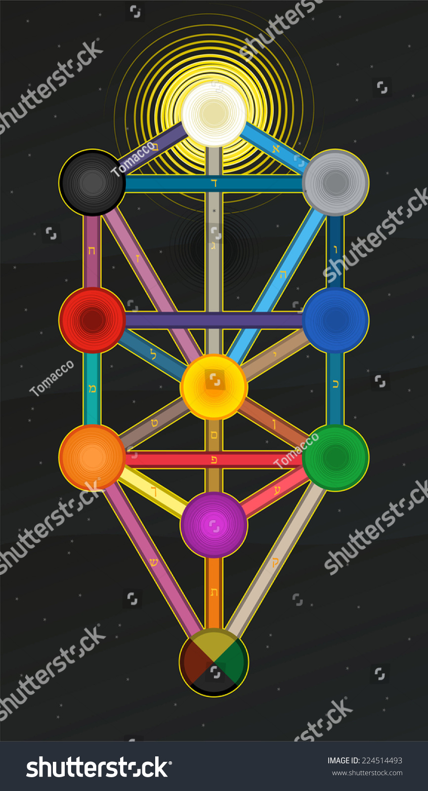 Sephirot Tree Life Kabbalah Stock Vector Royalty Free 224514493 The tree of life is a map; https www shutterstock com image vector sephirot tree life kabbalah 224514493