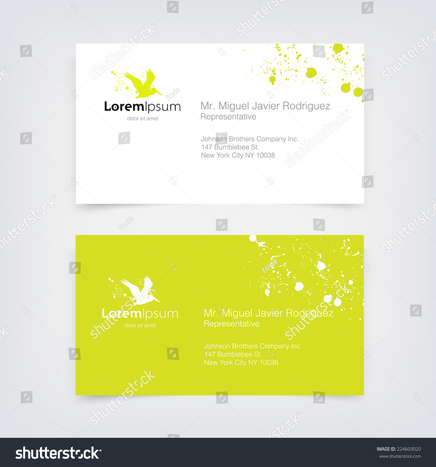 Vector lime green business card design stock vector royalty free vector lime green business card design template with flying pelican silhouette logo and paint splatter reheart