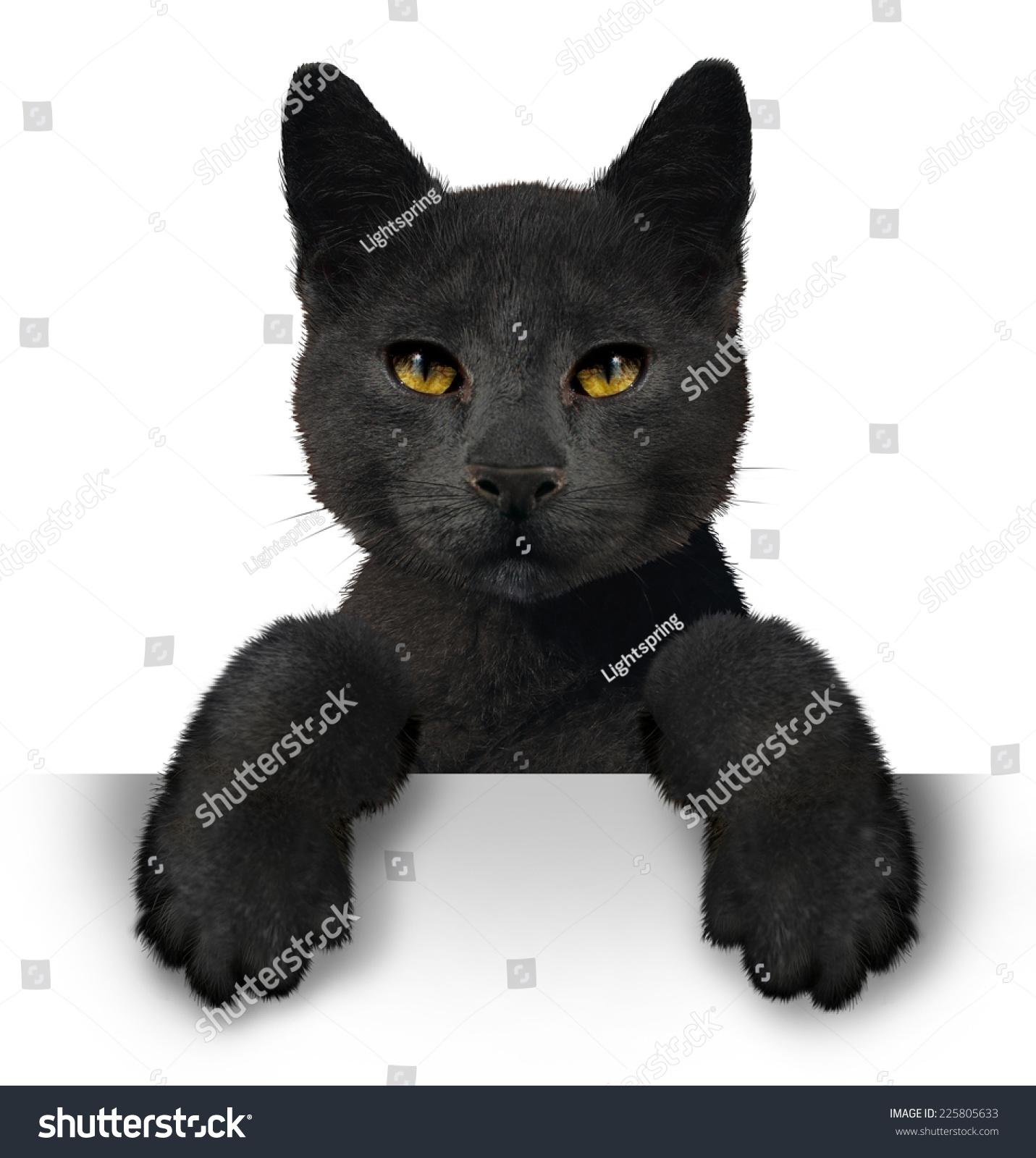 Black Cat Symbol Superstition Animal Horizontal Stock Illustration