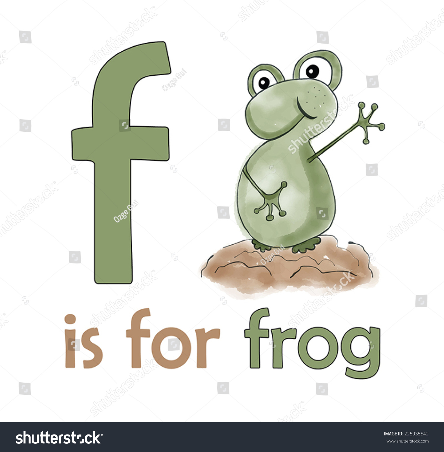 f is for frog children alphabet for kids educational books frog illustration for letter