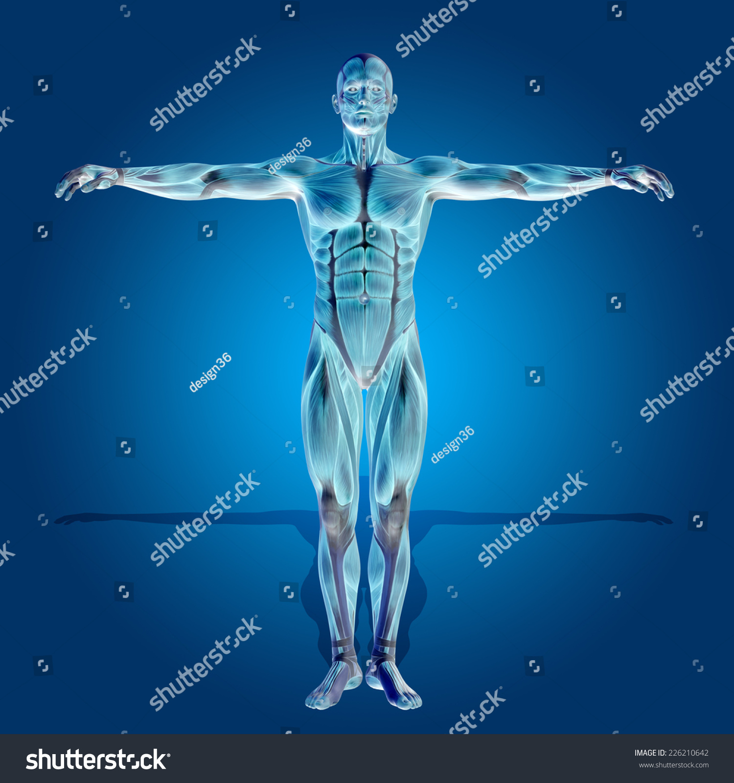 Concept Conceptual Human Man 3 D Anatomy Stock Illustration