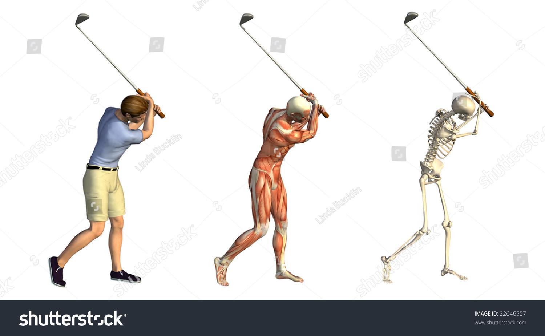 Anatomical Overlays Featuring Man Taking Golf Stock Illustration ...