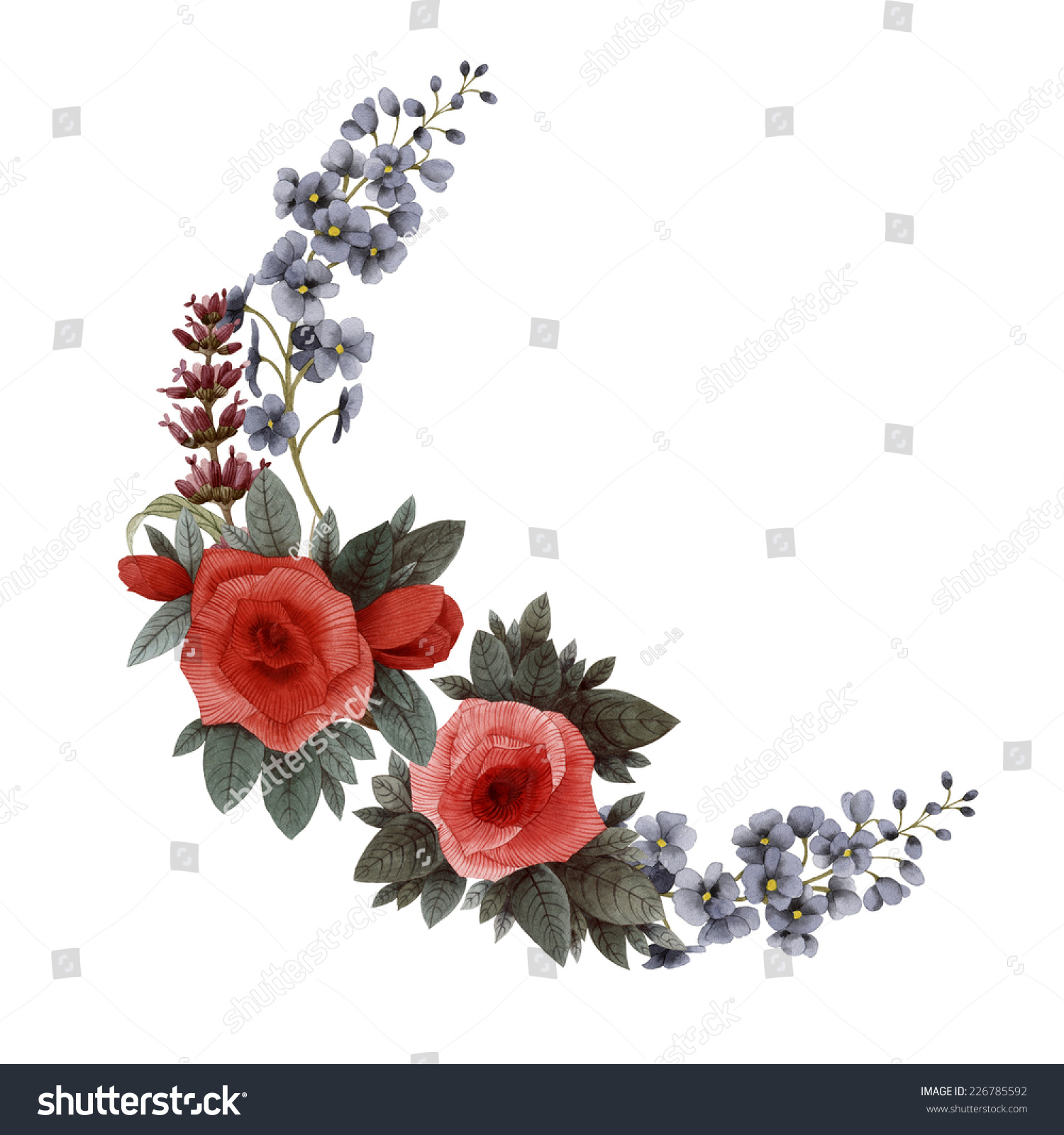 Bouquet Roses Lavender Delphinium Watercolor Can Stock Illustration ...
