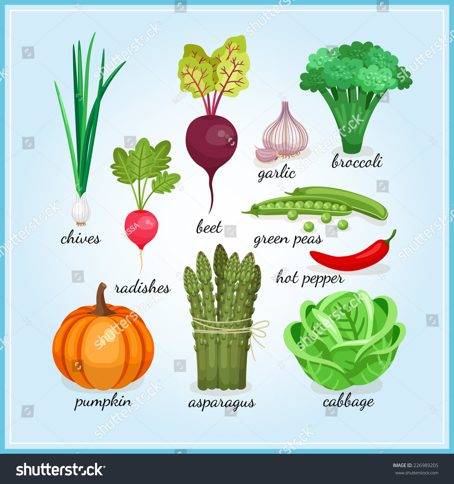 Healthy Fresh Vegetables Icons Names Including Stock Vector ...