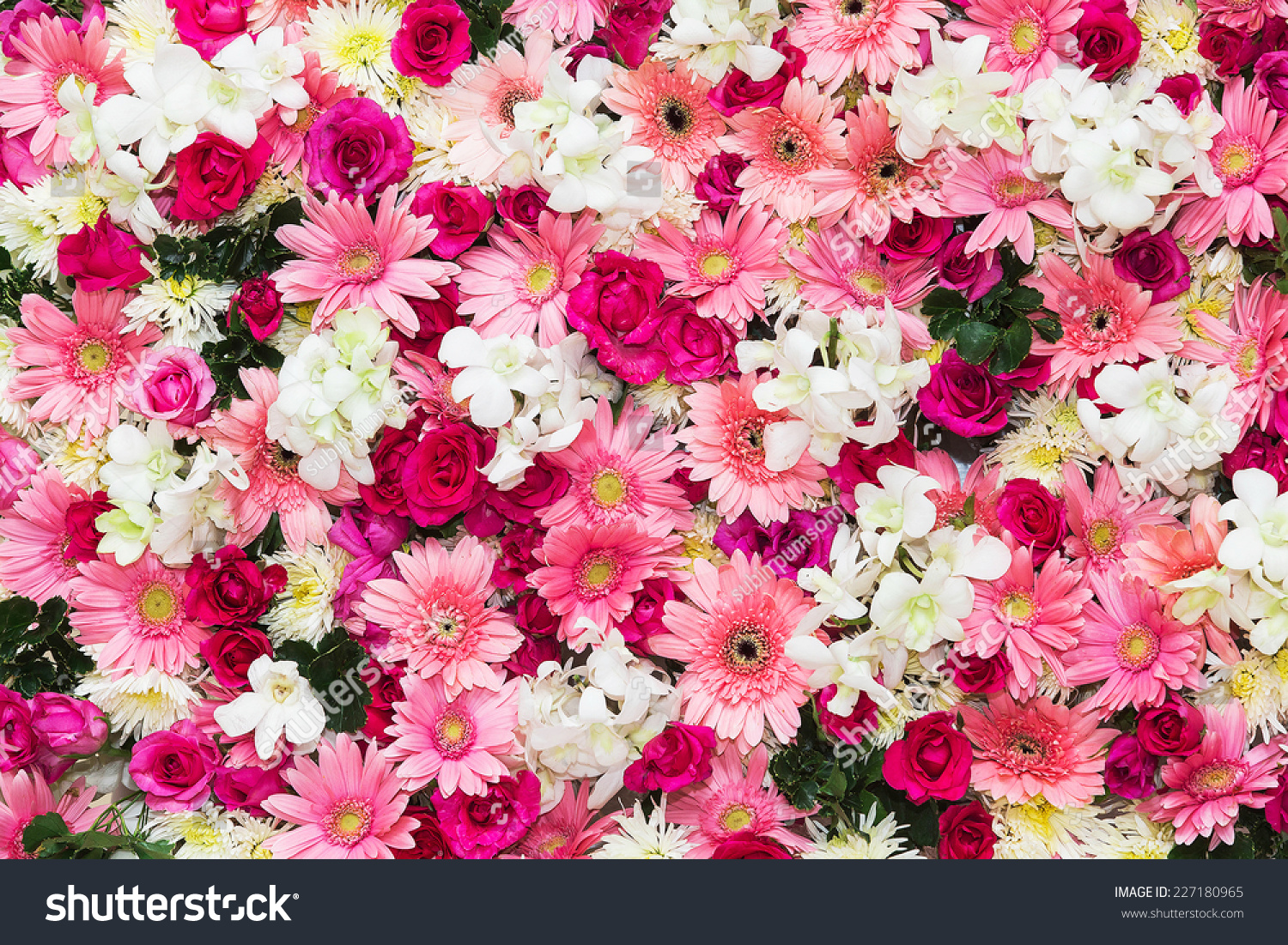 Beautiful Flowers Background Wedding Scene Stock Photo