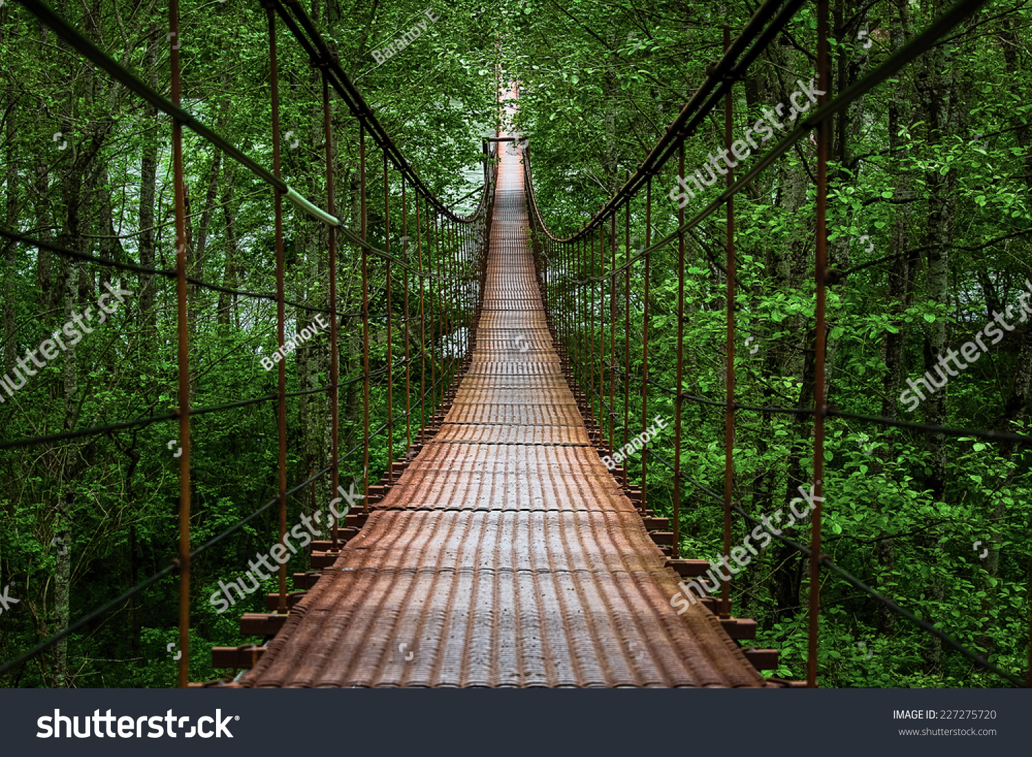 Suspension bridge, Crossing the river, ferriage in the woods #227275720