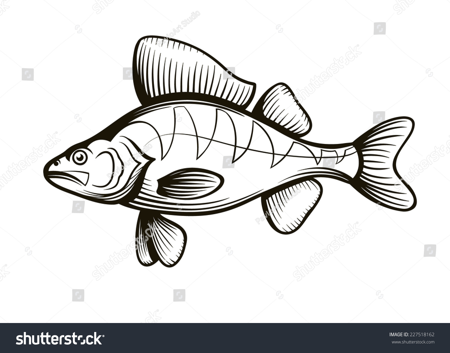 Perch Fish Outline Engraving Vector Illustration Stock 2018 Dragon Ball Z Coloring Pages Book