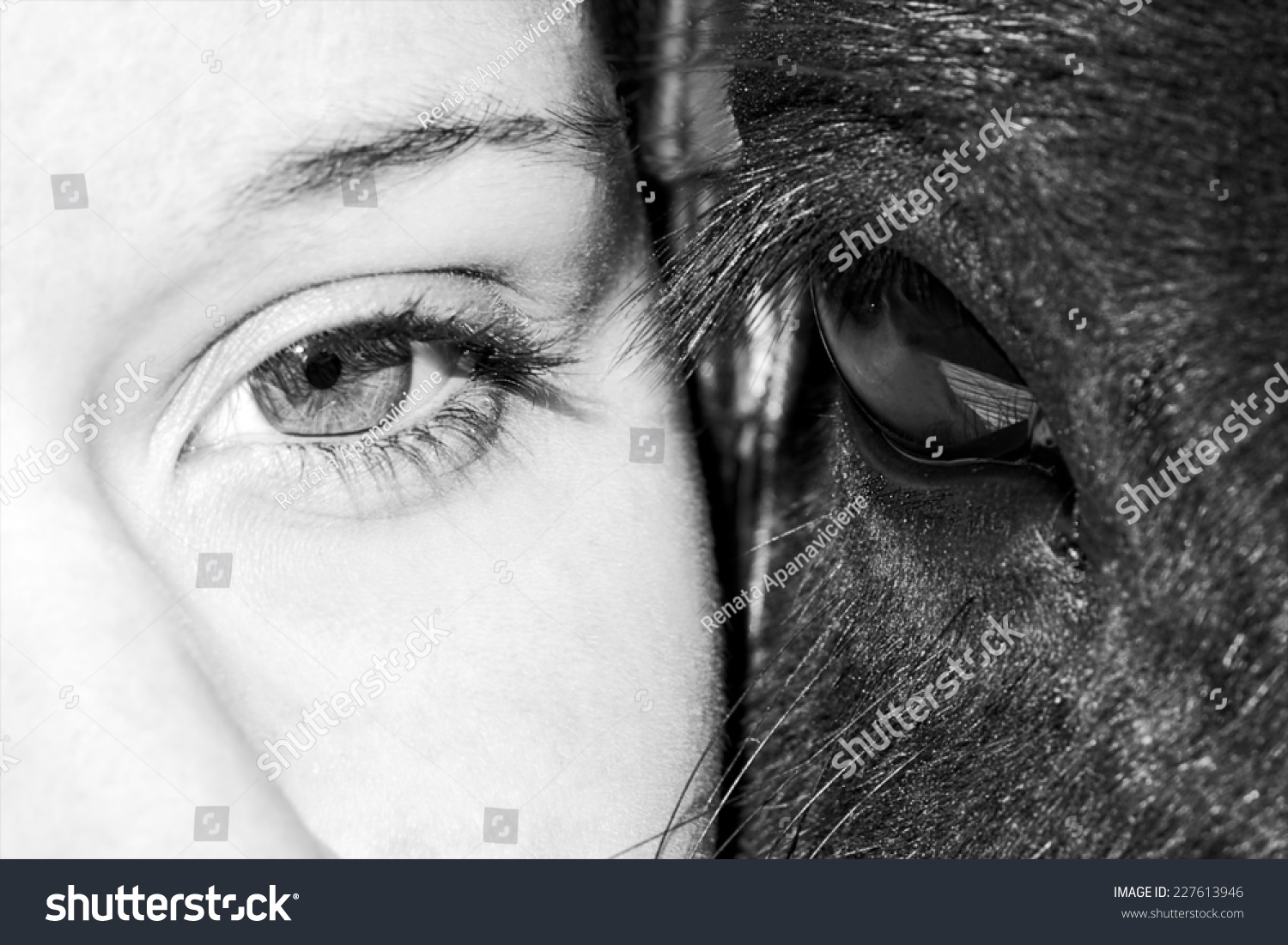 Eyes of girl and horse in black and white photo artistic photo of horse and