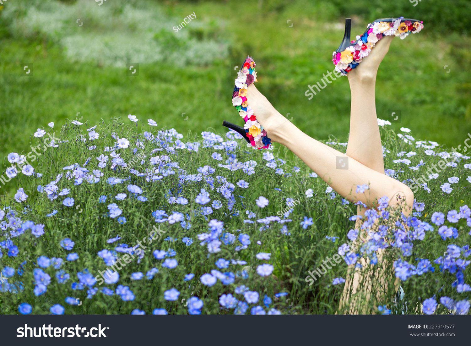 Playful Young Woman Legs On Flower Stock Photo Download Now