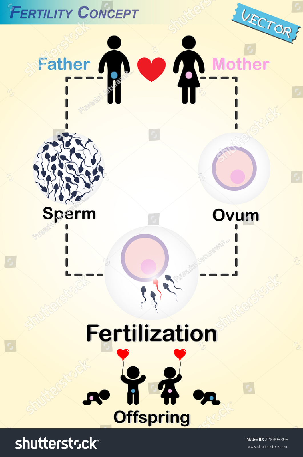 Delightful facial sperm flow - 3 1