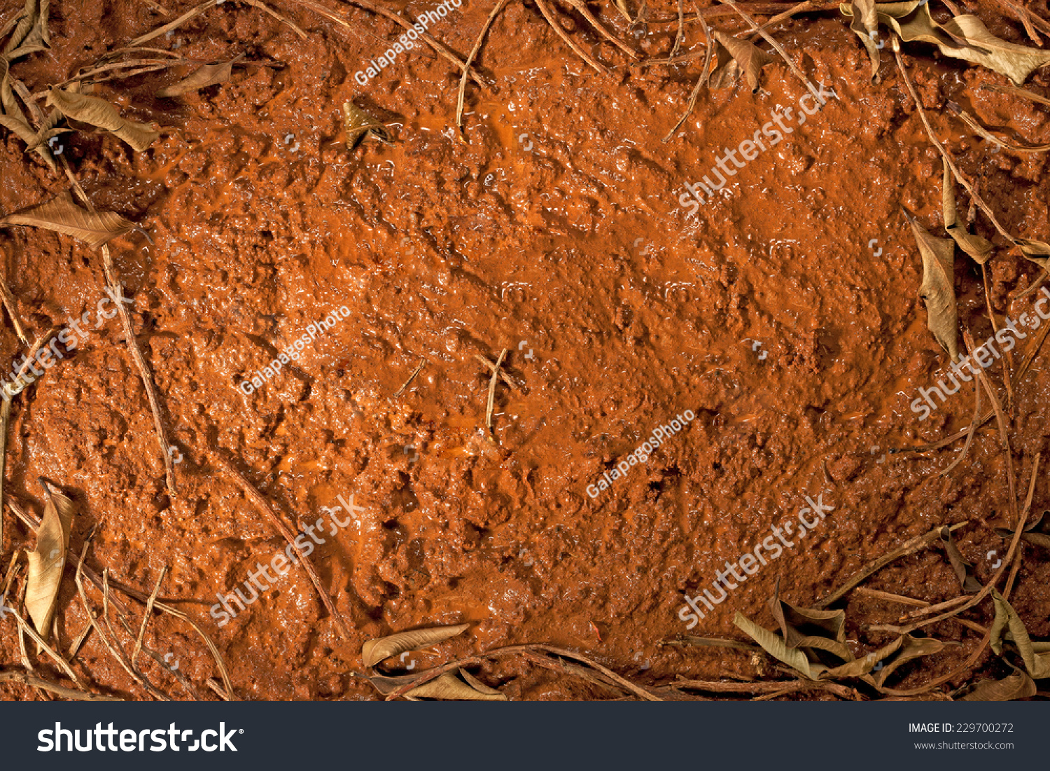 Red mud surface leaves top view stock photo 229700272 shutterstock red mud surface with leaves top view of rough road texture background dramatic lighting sciox Images