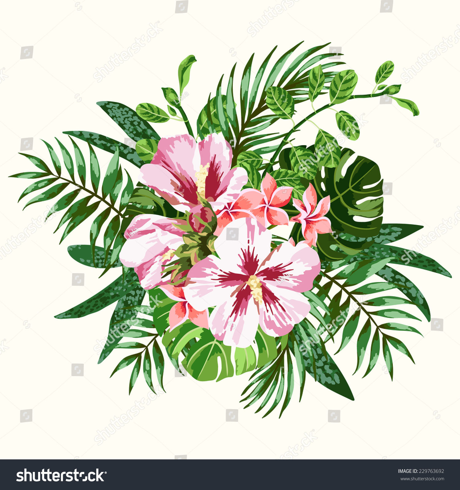 Bouquet Tropical Flowers Leaves Plumeria Hibiscus Stock Vector ...