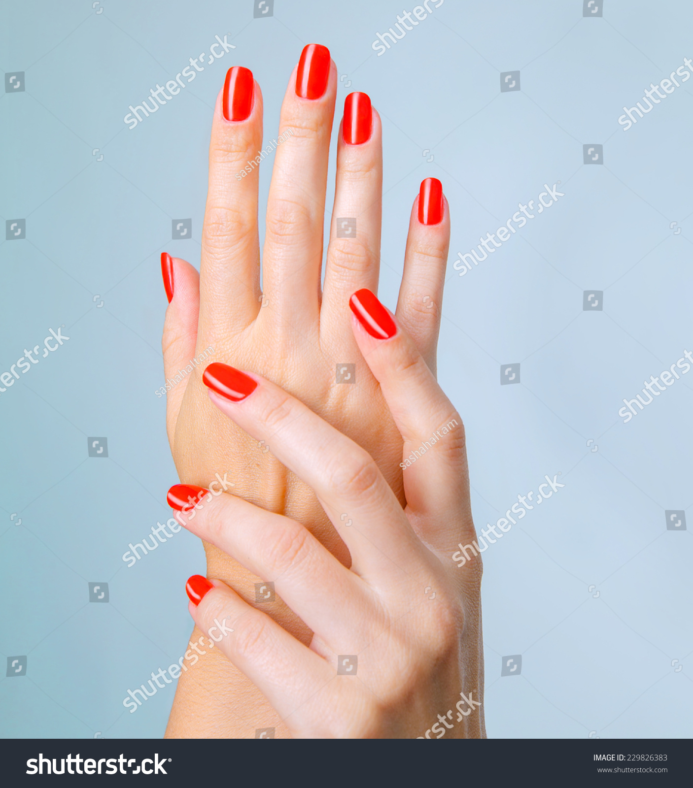 Closeup Photo Beautiful Female Hands Red Stock Photo (Royalty Free ...