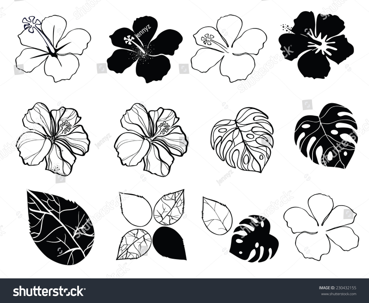 Black White Flowers Hibiscus Stock Vector Royalty Free 230432155