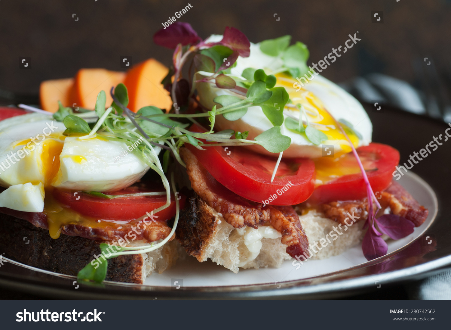 and tomato sandwich recipe dishmaps open faced egg and tomato sandwich ...