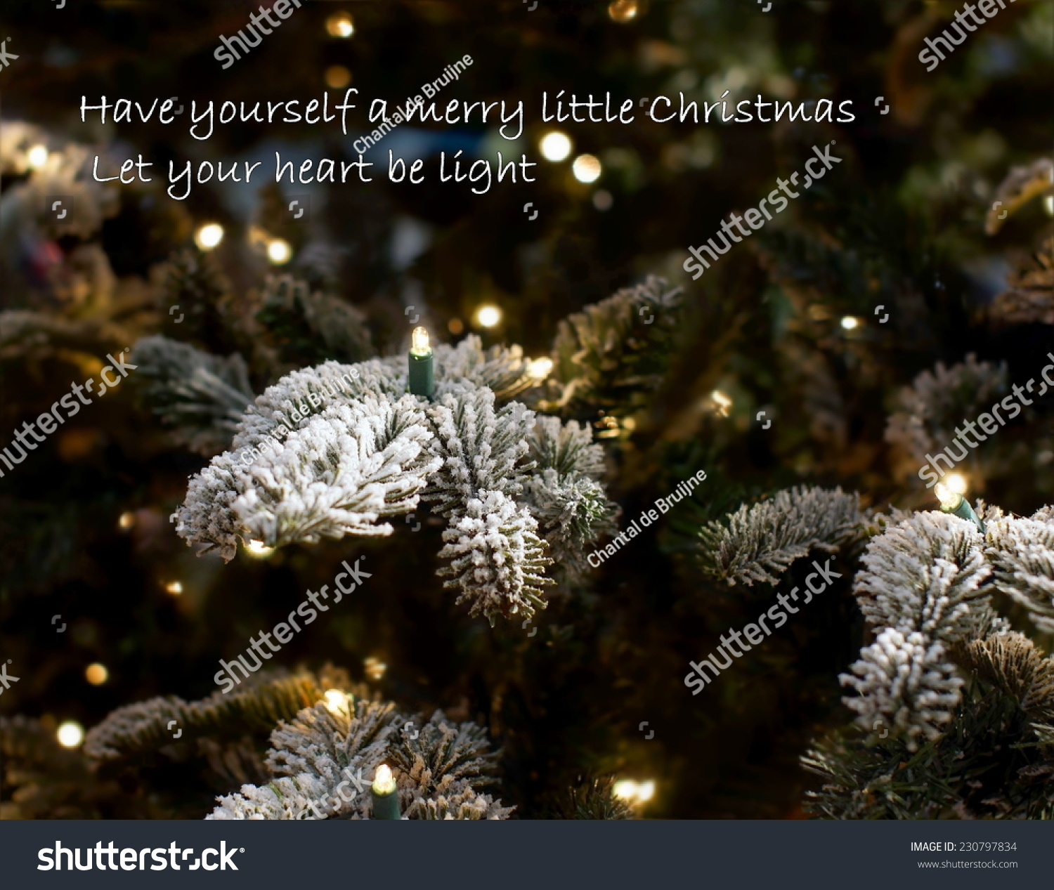 Christmas Background Quote Famous Christmas Song Stock Photo ...