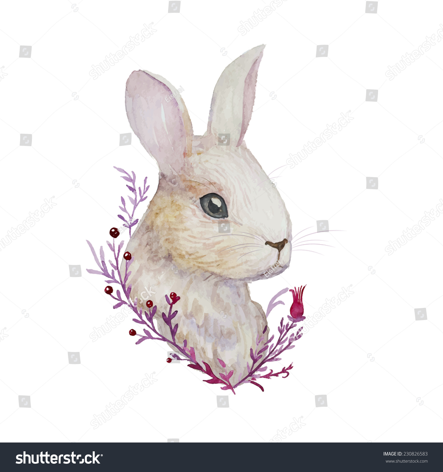 Hare illustration - photo#14
