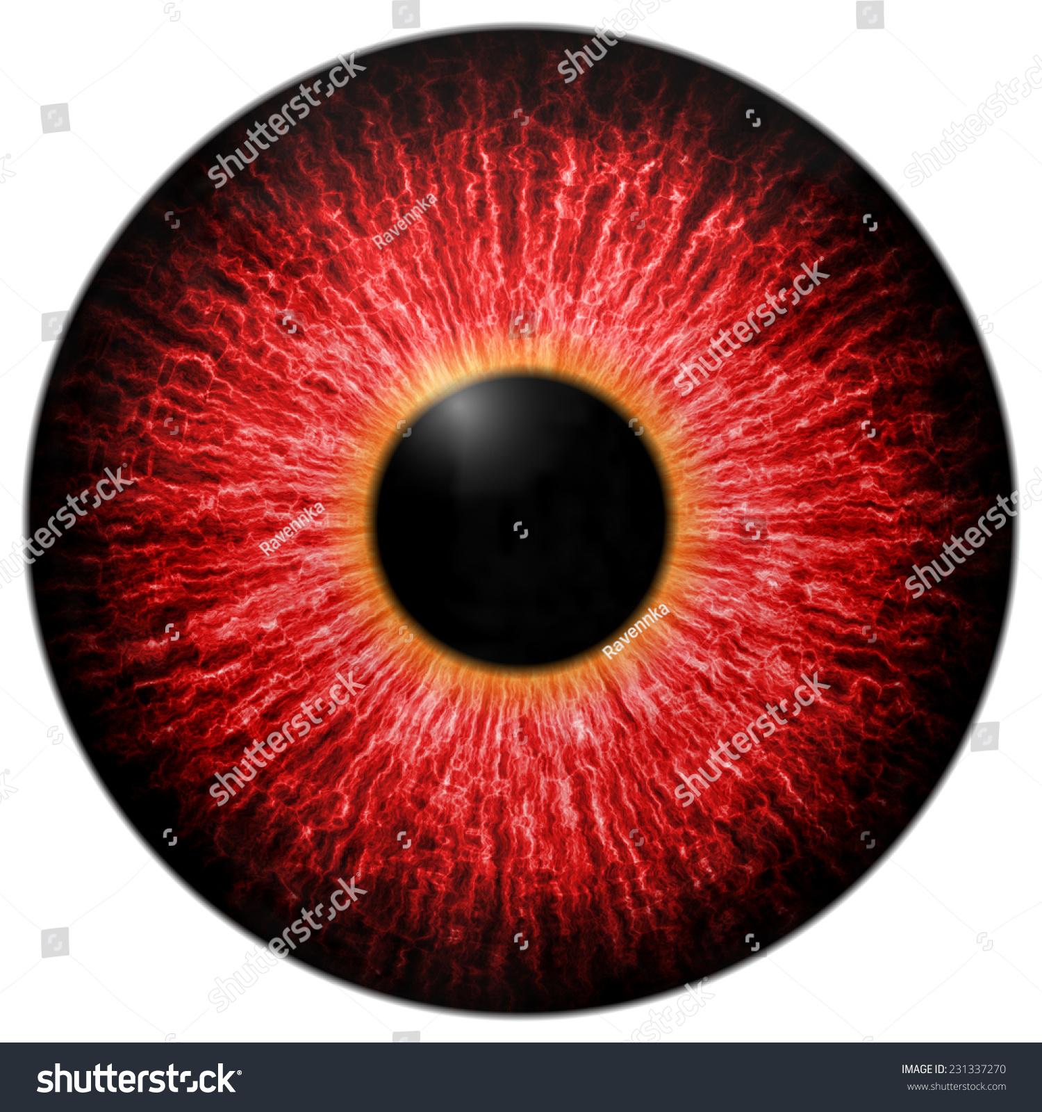 scary eyes Illustration of red scary eye isolated on white