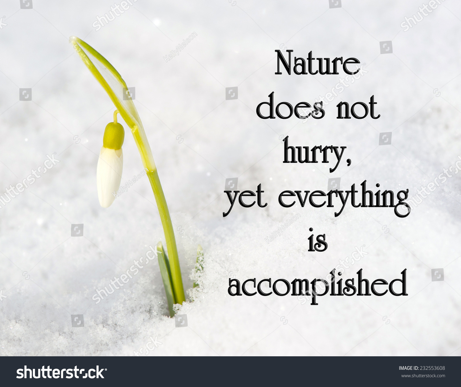 Inspirational Quote On Nature By Loa Stock Photo Edit Now