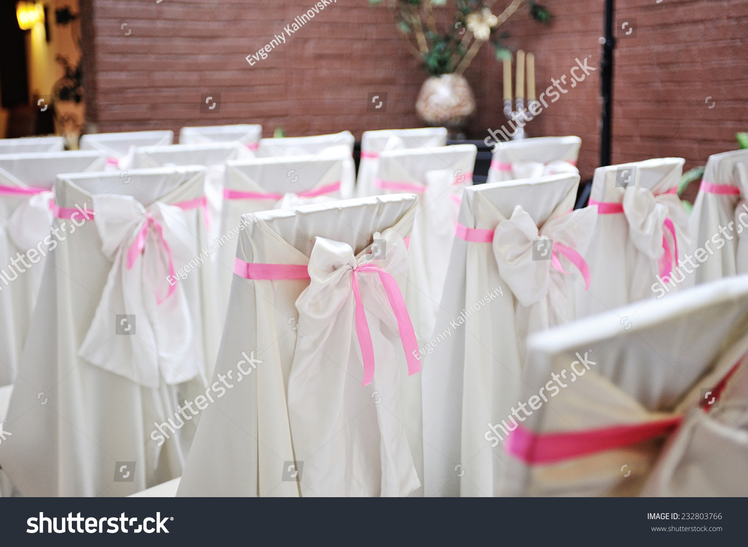Chairs Wedding Ceremony Beautiful Silk Covers Stock Photo (Royalty ...