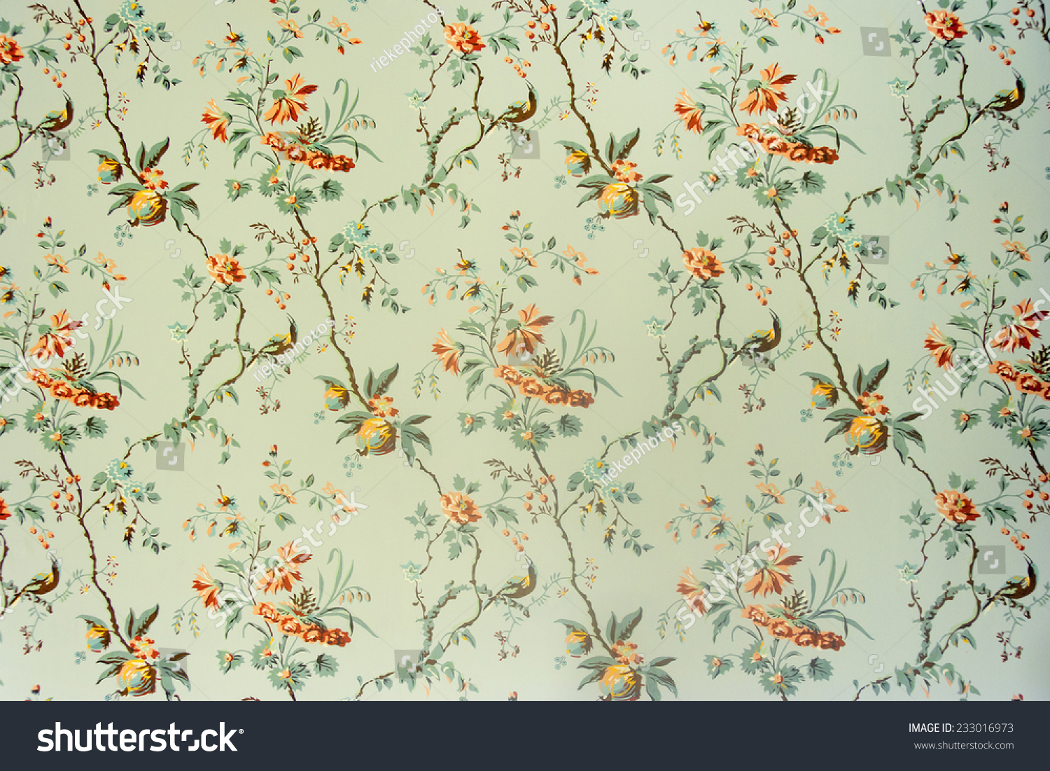 Vintage wallpaper - Floral pattern of 18th century
