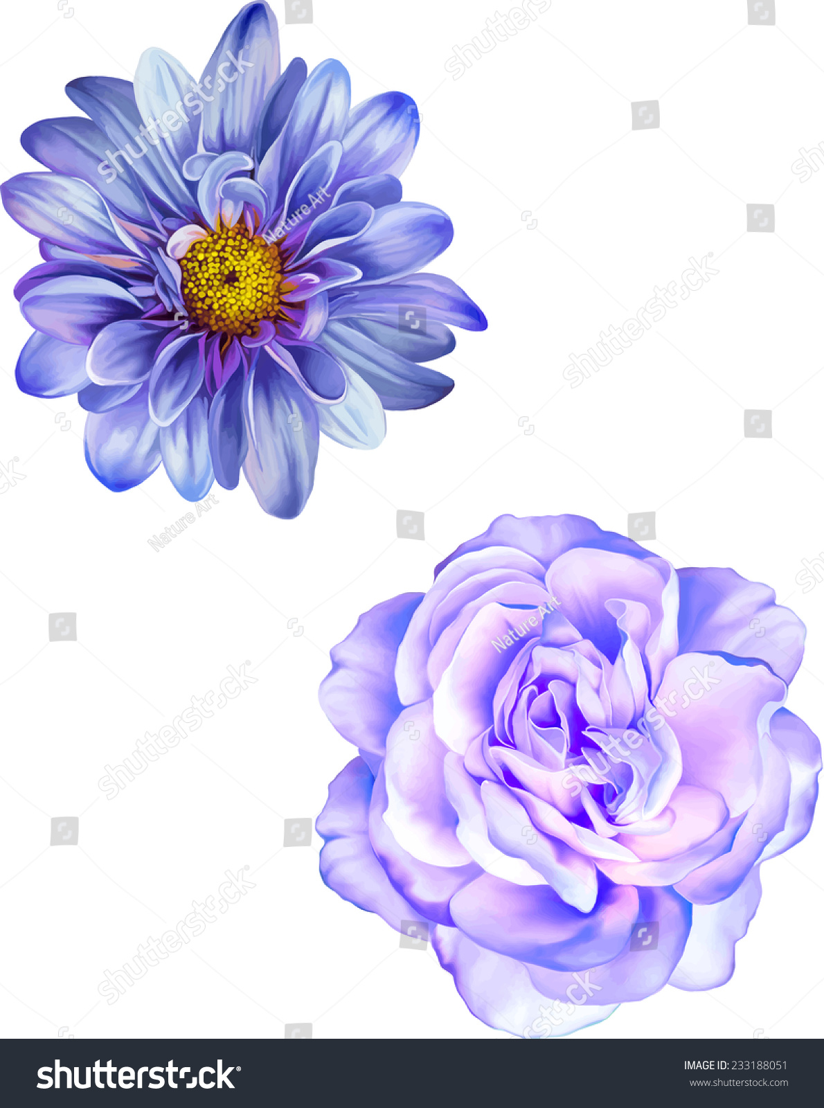 Blue mona lisa flower purple rose stock vector 233188051 blue mona lisa flower purple rose flower blue spring flowers isolated on white dhlflorist Choice Image